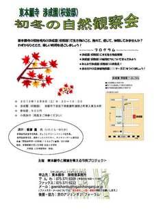 初冬の自然観察会.jpg